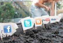 #SocialMedia / by Adam May