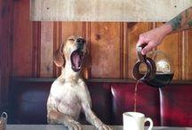 Coffee....