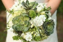 Dream Bouquet: Bridal Bouquets