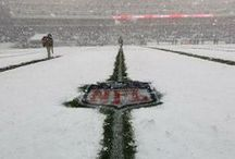 Eagles Vs Lions SNOW!!!!! / One of the coolest games I have ever watched!!! / by Sage Williams