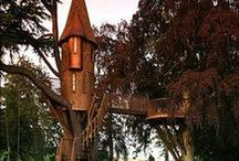 Treehouse Dreaming / ...For the Child in all of us