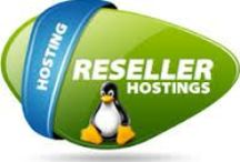Reseller Hosting Services / With Reseller Linux Hosting you can add multiple domains in one place and manage them easily.