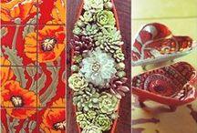 Succulent Indoors / ✧☽ Succulent Boheme Make + Inspire + Aloe + Cacti + Indoor Plants ✧☾ #Bohemefit