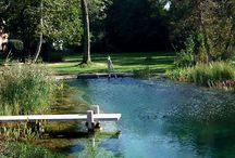 piscine e giardino