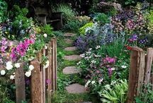 Garden: Paths, Stairs / by Sue Leigh