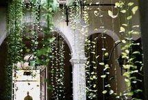 Vertigal garden
