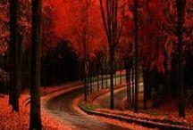 Breathtakingly beautiful... / by Kesha Trippett