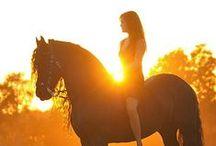 horses. Horses! HORSES!!! / by Avalon White