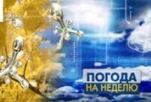 Новости Омска