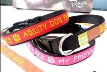 Collars & Leashes - Collari & Guinzagli / Guinzagli e collari personalizzati! - Your personalized leash and collar!