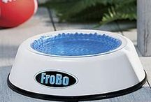 FroBo Cooling Pet Bowl / The Cold Water Bowl for Pets