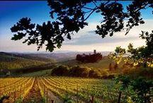 Descubre la Toscana / Todo sobre la Toscana en español.