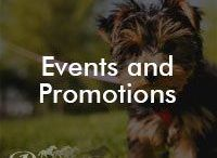 Events and Promotions / Pacesetter Homes' upcoming events, activities, and everything fun! (some are time sensitive!)