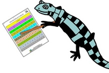 Fraction Worksheets / by Math Salamanders