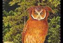Postal stamps Owls