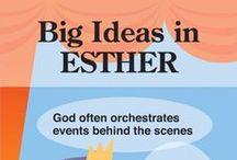 BIG IDEA IN BIBLE BOOKS