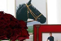 Everything Horse /   / by Tonya Vernon