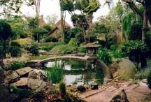 Kerrie's Wonderful Garden