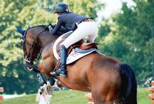 The Equine Lifestyle / Horse riding is not only a sport, it is a lifestyle