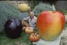 HANS HEDBERG / Hans Hedberg, född 25 maj 1917, död 27 mars 2007 i Biot i Alpes-Maritimes i Frankrike, var en internationellt verksam keramiker och skulptör.  Utbildade sig först inom måleriet hos Otte Sköld, Isaac Grünewald och Krästen Iversen vid Kungliga Konstakademien i Köpenhamn. Sin första separatutställning hade Hedberg på Galerie Blanche i Stockholm år 1953. Han var framför allt känd för sina gigantiska frukter och ägg i keramik. Han var bosatt i södra Frankrike sedan år 1949.