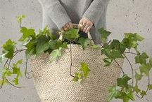 SBI | longing for GREENERY / ideas for greenery