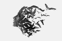 ~~ Noir & Blanc ~~ / Picthema vous propose sa sélection de photos, d'inspirations ou d'idées déco en noir et blanc.