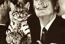 cats {art and famous people}