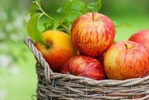 Vegetables, Fruit, Herbs & tips