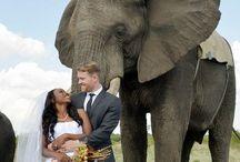 Wedding Locations / Ola La