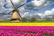 Netherlands (Holland)