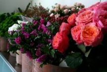 My floral shop / In my floral shop you may find the inspiration for a small gift, for decorating a table for each occasion, flower of course, perfumed candles, spray perfum for  ambience