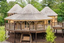 Treehouse - king Arthur's Willow / Dream under the stars in the luxury of our new treehouse - king Arthur's willow.