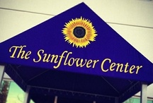 "The Sunflower Center / The Sunflower Center is a warm place to grab a healthy bite to eat, relax, and meet like-minded people. Our aim is to provide a center for vegan living.. a place where everyone in the community can learn and come to be healthy and happy. Our restaurant is open until 10 PM every day and we host all kinds of events–music, classes and lectures–every week. You can also find our ""Lydia's Organics"" Kale Krunchies and raw food bars at health food stores around the country. / by Lydia's Organics"