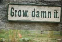 Home: Gardens, Grow it or not. / by Mona-Rey