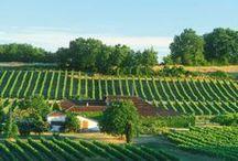 """Vignobles et vins du Gers / Avec sa marque """"Les Bons Crus d'Artagnan®"""", le Tourisme du Gers vous emmène à la découverte de celles et ceux qui font le vin au travers de ses appellations."""