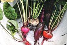 Vegetables & Herbs / Seasonal Vegetables and Herbs