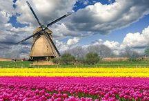 Hollandia-Nederland