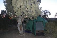 Camping Hotspots