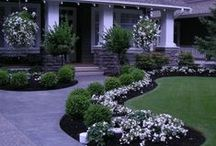 Landscaping Ideas  / Landscaping can make a new house really feel like home. A gallery of landscaping inspiration for new homeowners.