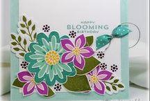 SU : Flower Patch