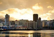 Wellington / #Wellington #Scenery #New Zealand