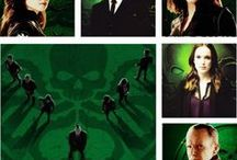 Agent of S.H.I.E.L.D