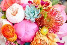 ♡ Flowers Ⅰ ♡