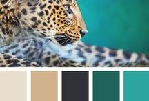 Colour Trends & Palettes