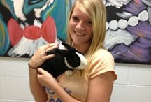 Success Stories of 2013 / From cats and dogs to birds, rabbits and everything in between. The Humane Society of Greater Dayton works tirelessly to show that all animals should be valued and loved.