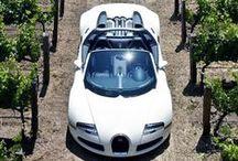 Bugatti / by Oscar Rockwell