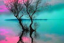 Glorious Color! / by Misty Aamen
