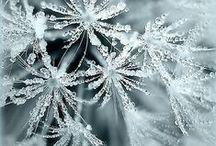ICE, SNOW, ECT.