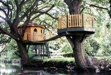 Tree Houses / by ☽Lauren Musick☾