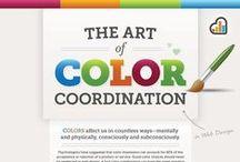 Color / Information & Palette